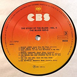 Various Blues Artists 1970'S 66232 The Story of the blues vol.II 2lp vinyl LP no cover